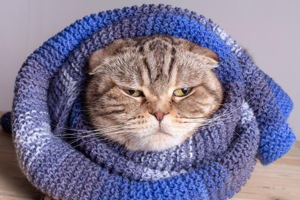 Protéger sa serrure du froid